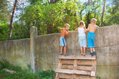 Curious children spying over the fence — Stock Photo