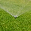 Stock Photo: Grass sprinkler
