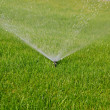Grass sprinkler — Stock Photo #1845537