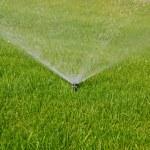 Grass sprinkler — Stock Photo #1845537