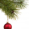 christmas decoration ball on the firtree — Stock Photo