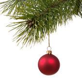 Bola de decoración de navidad en el firtree — Foto de Stock