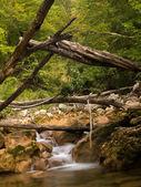 Vattendraget vid utsikten. berg — Stockfoto