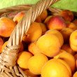 Fresh juicy apricots in the basket — Stock Photo #1046741