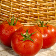 Fresh ripe tomatoes with water drops on — Stock Photo