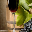 Old red wine with grape still-life — Foto Stock
