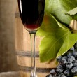 Old red wine with grape still-life — Stock Photo