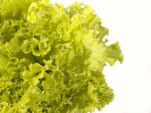 Fresh raw lettuce with water drops. This — Stock Photo
