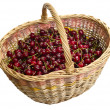 Royalty-Free Stock Photo: Magic basket with cherry. Isolated on wh