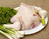 Chicken, prepared for cooking with spice — Stock Photo