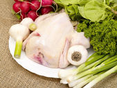 Chicken prepared for cooking with spices — Stock Photo