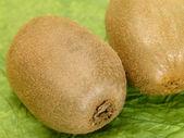 Fresh tasty kiwi fruit on green backgrou — Stock Photo