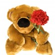 Teddy Bear — Stock Photo #1795859