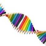 Dna molecule of pencils — Stock Photo