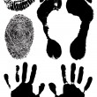 Black ink stamps of human hands, foots, — Cтоковый вектор