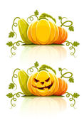 Halloween pumpkin vegetables with green — ストックベクタ