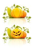 Halloween pumpkin vegetables with green — Vector de stock