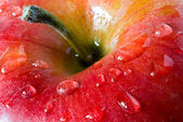 Apple with drop dew — Stock Photo