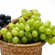 Grape in wooden basket — Stock fotografie