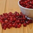Royalty-Free Stock Photo: Frozen cranberries, cranberry