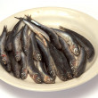 Sprat — Stock Photo