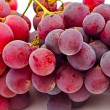 Stock Photo: Cluster grapes