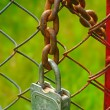 Stock Photo: Padlock and chain