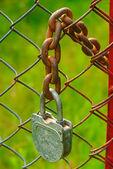 Padlock and chain — Stock Photo