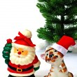 Santa Claus and tiger and  christmas t — Stock Photo