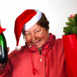 Mrs Santa Claus — Stock Photo #1335674