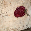 Stock Photo: Grunge paper with sealing wax