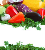 Fresh tasty vegetables — Stock Photo
