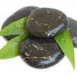 Spa stones and green leaves - Stock Photo