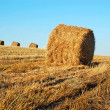 Hay bales — Stock Photo #1036571