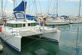 Catamaran and docked boats — Stock Photo