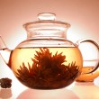 Glass teapot and cup — Stock Photo #1041159