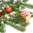 Christmas decoration — Stock Photo #1041900
