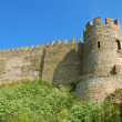 Stock Photo: Medieval castle