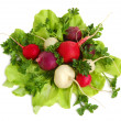 Fresh tasty greens and radish - Stock Photo