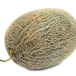 Cantaloupe melon — Stock Photo #1046156
