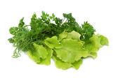 Fresh tasty greens — Stock Photo