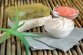 Spa ingredients with aloe vera — Stock Photo