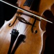Cello on black — Stock Photo