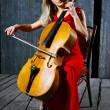 Beautiful cello musician — Stock Photo #2150450