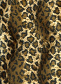 Leopard background — Stock Photo