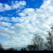 Winter sky — Stock Photo
