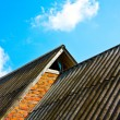 Roof — Stock Photo #1018479