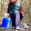Stock Photo: Collecting birch sap