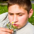 Stock Photo: Guy sniffing daisies