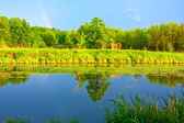 May landscape — Stock Photo